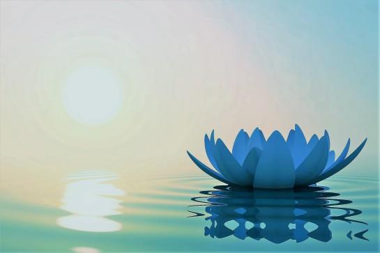 Médiatation Paix mentale Esprit-sage